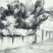 """""""Domenica mattina, via Tizzoni"""" - carboncino su carta cm. 21 x 29,7 – € 70,00"""