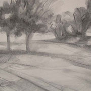 """""""Parco a Cavalese""""- carboncino su carta cm. 21 x 29,7 – € 60,00"""