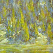 """Pomeriggio in pineta"" - olio su tela cm. 50 x 40 - € 180,00"