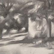 """Casetta al parco, Cavalese"" - carboncino su carta cm. 21 x 29,7 – € 60,00"