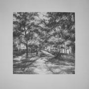 """Passeggiando nel parco"" - carboncino su carta cm. 29,7 x 41 - € 120,00"