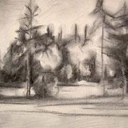 """""""Boschetto in Val di Fiemme"""" - carboncino su carta cm. 21 x 29,7 – € 60,00"""