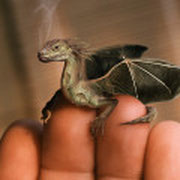 "Drachen Revival in Hollywood (Film ""Eragon"")..."