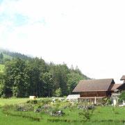 Kiental, Schweiz