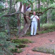 at/en Plateau des Fées (Fairy Plateau, Meseta des las Hadas)...