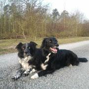 Phebbels und Faye