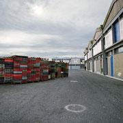 Peniche 7 - Atlantica © Mathilde Bouvard
