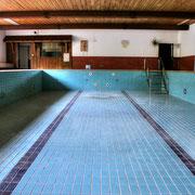 """Indoors Pool """"Swan"""""""