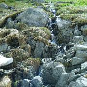 でも娘は下山しながら回復。これはたぶん常願寺川の源泉の一つ。スゲー(;゚д゚)