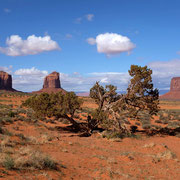 Wildcat Trail Monument Valley