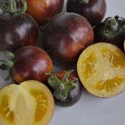 TOM 093 Plüschtomate / Gelborange, violette, mit leichten Flaum, Sehr angenehme Süsse mit fruchtigem Geschmack.