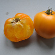 44 PSR Gelbes Ochsenherz / Schwach gerippte, ziemlich grosse, gelbe bis orange Früchte. Herzför-mig, fleischig und süsslich.