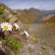 Haute Alpes (05) - Octobre 2014