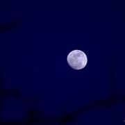 Peyruis (04) - Mars 2014