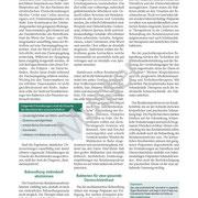 Muster Gesundheitsbrief Reizdarm, Seite 4
