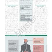 Muster Gesundheitsbrief Reizdarm, Seite 2