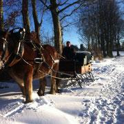 Pferdeschlitten beim Urlaub auf dem Bauernhof NRW im Winter
