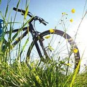 urlaub in nrw mit dem fahrrad / © Petair