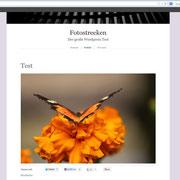 """Einzelbild mit der """"Full width"""" Layout-Veränderung"""