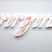 virgin, 2004, Lichtschlauch, Styropor, Gabun, 125 x 235 x 12 cm