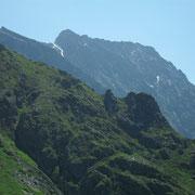 Steinhaushorn