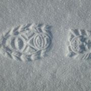 Weshalb knirrscht der kalte Schnee unter den Füssen?