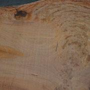 Eukalyptis Maser Stamm, Breiten bis zu 2 m! Einmalige Holzplatten