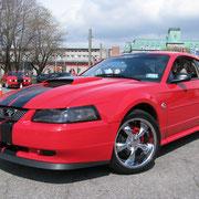Mustang 2004 de Alain Coulombe