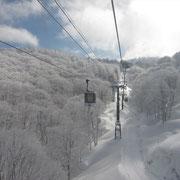 昨日からの雪で樹氷がきれいです