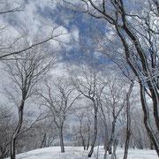 下山途中の雪景色