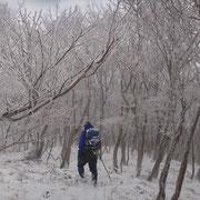 霧氷の中を行くリーダー
