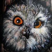 Gufo.Olio su legno dim.20x24