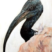 Ibis grigio. Acrilico su cartoncino telato dim.30x40