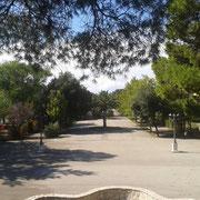 Vista dal Boschetto, viale dei giardini pubblici, Foggia 2013
