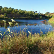 dunkelblau liegt er da, der kleine See am frühen Morgen