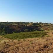 Luke und einer dieser Weitblicke über das Land und die Hügel der Serra, die einfach nur der Seele guttun