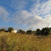 auch diese Ruine im Hintergrund gehört zu der kleinen Gruppe von alten Gebäuden; an diesem Morgen hat mich die Stimmung, das Licht, die Wolken und die Gräser einfach inspiriert ...