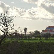 ländlicher Tourismus ... Quinta bei Vila Nova