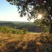 Langsam erhebt sich die Sonne über die Hügel und verzaubert durch Lichtreflexe