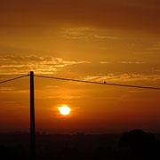 ein Vogel im Sonnenaufgang über Monte Gordo
