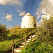die recht gut erhaltene Mühle von Ribeira de Alamo, einzig die Flügel wurden ihr genommen