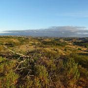 der Blick von einem der höchsten Berge in die Weite ... ein wunderbarer Tagesbeginn, der Aufstieg hat sich gelohnt