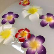 お花と貴族愛用ロバミルクフットバス