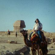 Haciendo camello en Giza