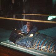 Aqui junto a la tapa del ataud de la misteriosa tumba 55 del Valle de los Reyes.Los restos del cuerpo que contenia aparentemente podrian ser los de Akhenaton.