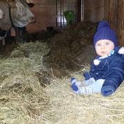 Unser Enkel Felix fühlt sichauch bei den Kühen wohl