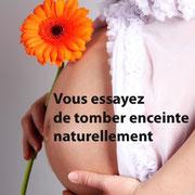 recommandations et régimes de fertilité