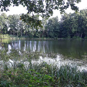 am Haussee