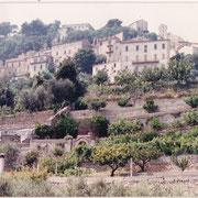 Attuale giardino Bacher di proprietà privata (foto L.Piunti)