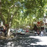 Aperçu du coeur très animé de la ville de Mendoza